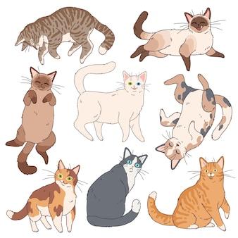 Chats de dessin animé. chatons mignons différentes couleurs, chat paresseux drôle. adorables animaux de compagnie ludiques, ensemble d'animaux de bande dessinée amusants simples à la maison