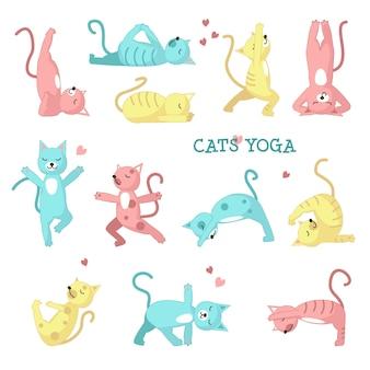 Chats faisant des poses de yoga
