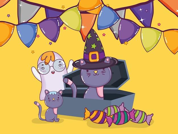 Chats d'halloween et fantômes