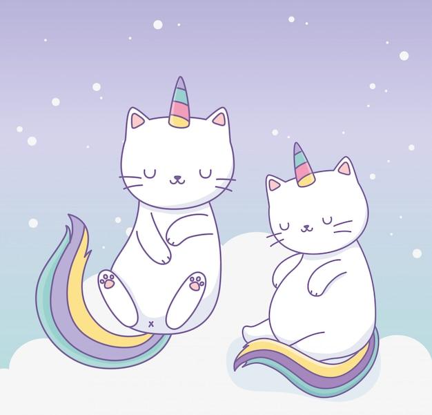 Chats mignons avec personnages kawaii à queue arc-en-ciel