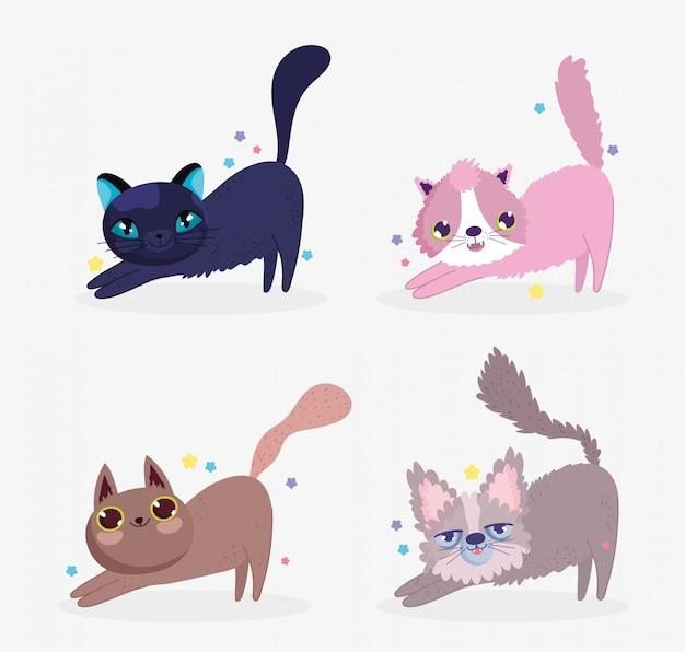 Chats mignons s'étirant animal domestique de dessin animé, animaux de collection