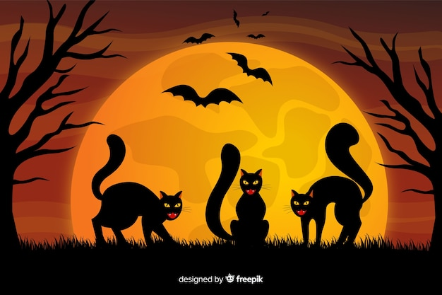 Chats noirs et fond d'halloween de pleine lune