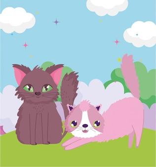 Chats s'étirant et assis dans l'herbe
