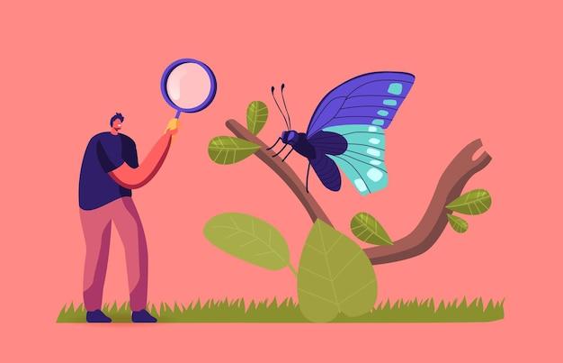 Chercheur entomologiste ou personnage amateur recherche et étude des insectes papillons dans la nature et la faune sauvages