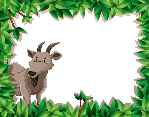 Une chèvre sur cadre nature