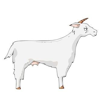 Chèvre sur fond blanc vecteur de dessin animé mignon