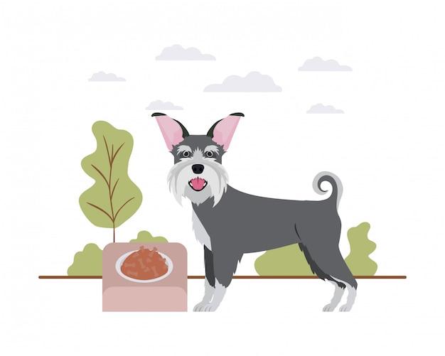 Chien avec bol et nourriture pour animaux de compagnie sur le paysage