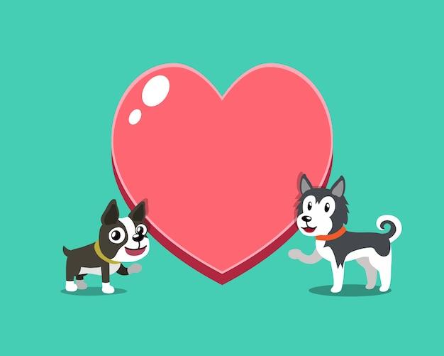 Chien boston terrier et chien husky sibérien avec grand coeur