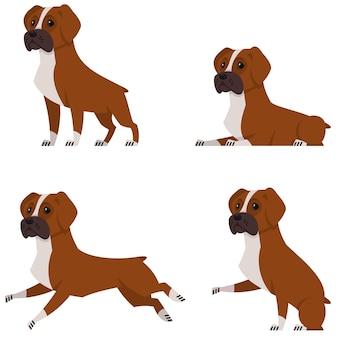 Chien boxer dans différentes poses. bel animal de compagnie en style cartoon.