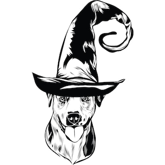 Chien catahoula en chapeau de sorcière pour halloween