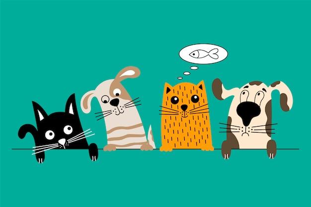 Chien et chat meilleurs amis.