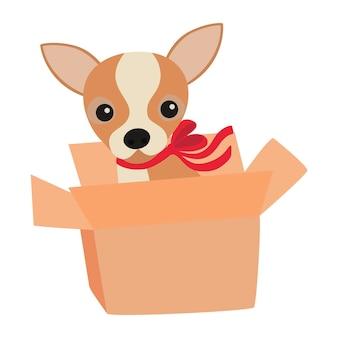 Chien chihuahua mignon avec un arc rouge dans une boîte
