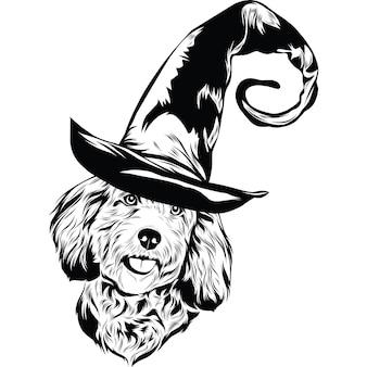 Chien cockapoo en chapeau de sorcière pour halloween