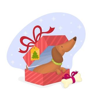 Chien dans une boîte cadeau de noël