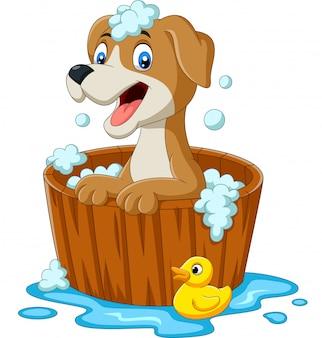 Chien de dessin animé ayant un bain