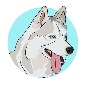 Chien husky aux yeux bleus portrait.