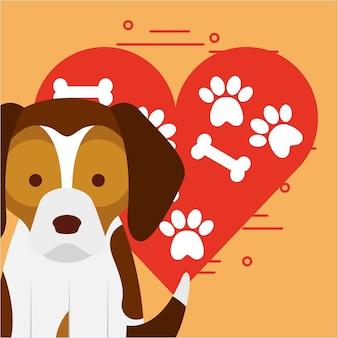 Chien mignon assis avec patte et os coeur amour chien animal de compagnie