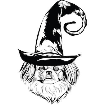 Chien pékinois au chapeau de sorcière pour halloween