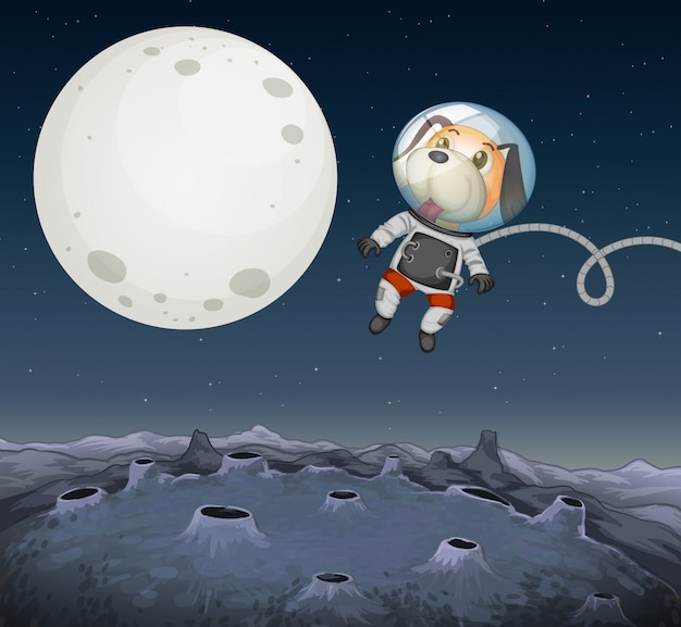 Un chien qui explore dans l'espace
