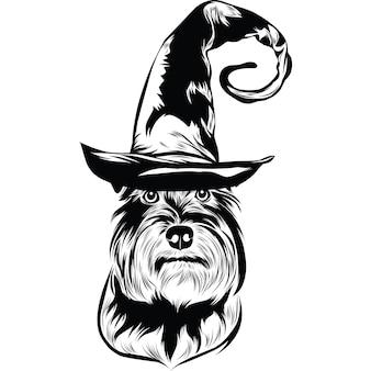 Chien schnauzer nain en chapeau de sorcière pour halloween