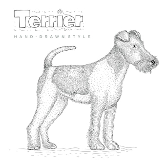 Chien terrier. illustration animale dessinée à la main