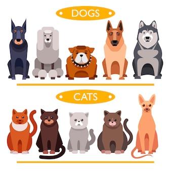Chiens et chats. jeu de vecteur de dessin animé