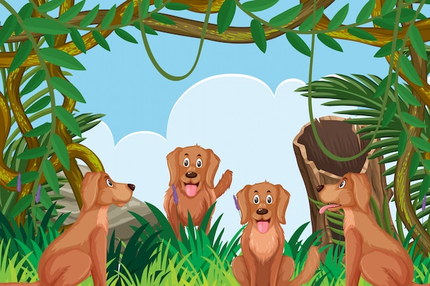 Chiens dans la scène de la jungle