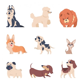 Chiens de dessin animé. chiots husky labrador retriever, ensemble d'animaux heureux plat, animaux domestiques isolés sur blanc