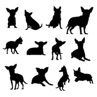 Chihuahua chien vecteur silhouettes illustration eps10