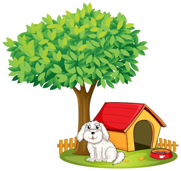 Un chiot blanc à côté d'une niche sous un grand arbre