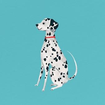 Chiot dalmatien sur fond turquoise