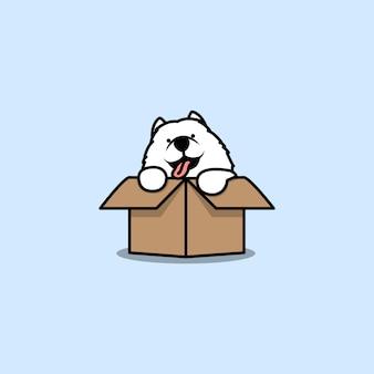 Chiot samoyède mignon dans l'icône de dessin animé de boîte