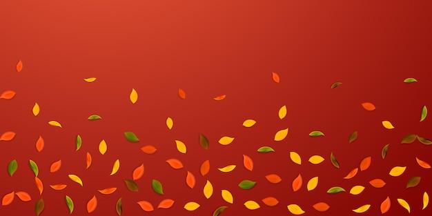 Chute des feuilles d'automne. feuilles aléatoires rouges, jaunes, vertes, brunes volantes. feuillage coloré de pluie tombante sur fond rouge attrayant. charmante vente de rentrée.
