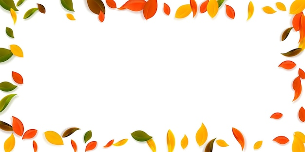 Chute des feuilles d'automne. feuilles chaotiques rouges, jaunes, vertes, brunes volantes. cadre feuillage coloré sur fond de coucher de soleil brillant. charmante vente de rentrée.