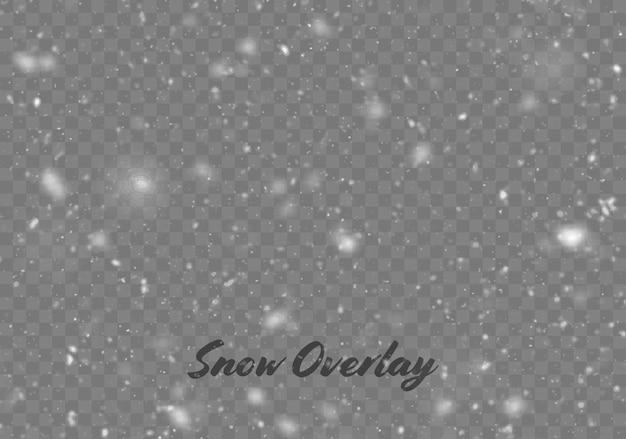 Chutes de neige de vecteur isolé. fond d'hiver. illustration de superposition de neige. flocons de neige et glace.