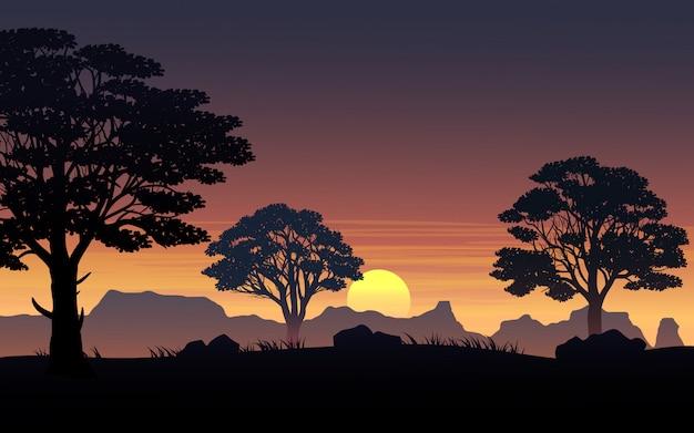 Ciel coucher de soleil dans la forêt avec des collines