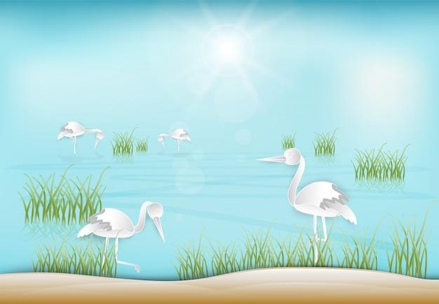 Cigogne à la recherche de nourriture dans le fond d'illustration de l'étang