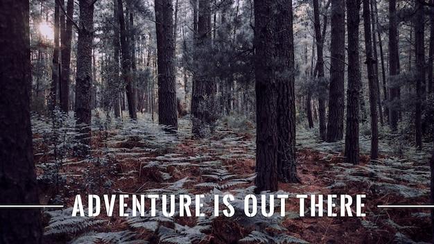 Citation d'aventure avec photo