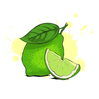 Citron vert frais avec feuille et tranche