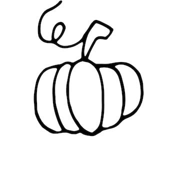 Citrouille dessinée à une main pour cartes de voeux, affiches, recette, design culinaire. isolé sur fond blanc. illustration vectorielle de griffonnage.