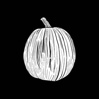 Citrouille dessiner gravure