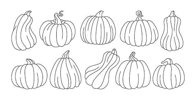Citrouille doodle set automne contour icône halloween ou thanksgiving day festival symbole collection