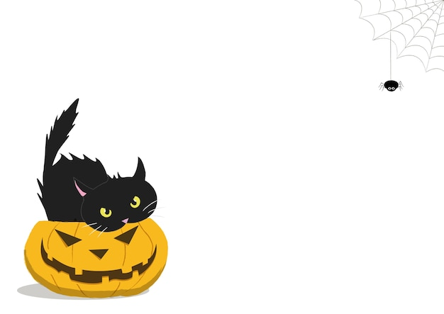 Citrouille d'halloween avec un chat