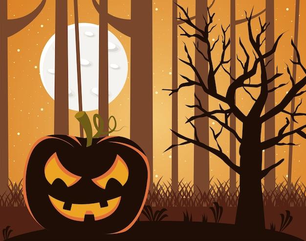 Citrouille d'halloween dans la forêt pendant la scène de nuit