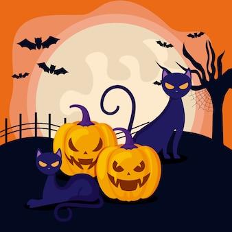 Citrouilles avec des chats dans la scène d'halloween