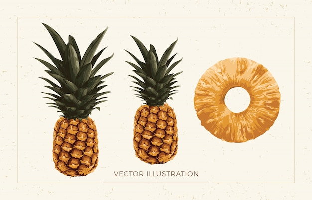Clipart d'ananas.
