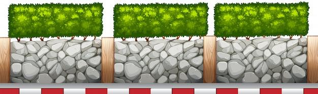 Clôture avec plantes et bord de la route