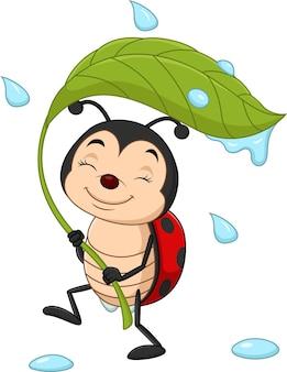 Coccinelle de dessin animé tenant une feuille verte