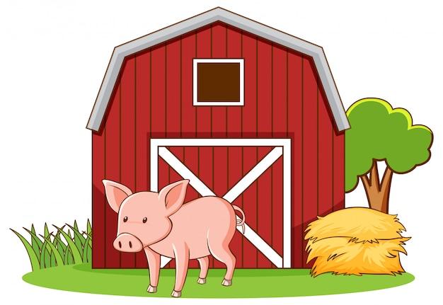 Cochon mignon debout sur cour de ferme