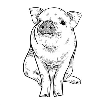 Cochon mignon souriant
